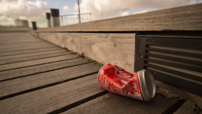 can-coca-cola-litter-9343