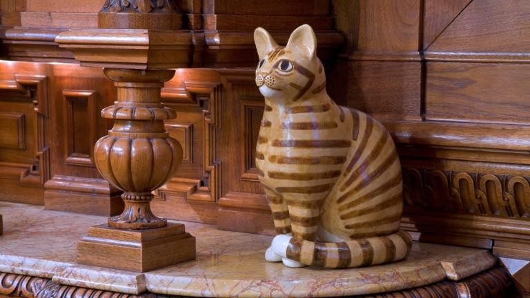 KattenKabinet_1