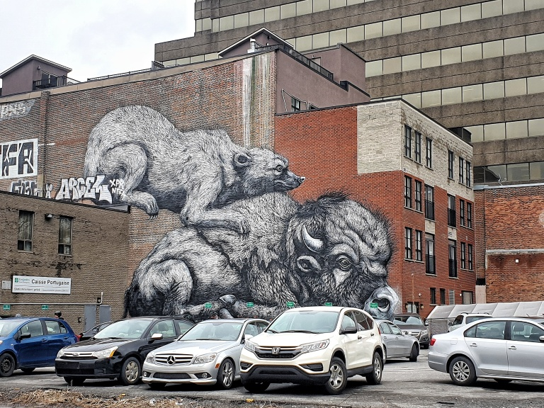 Roa street art in Montreal